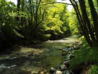Il fiume Bussento a Morigerati, foto di E. Signorelli